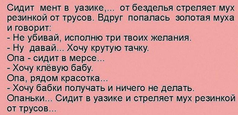 Анекдоты Про Ментов