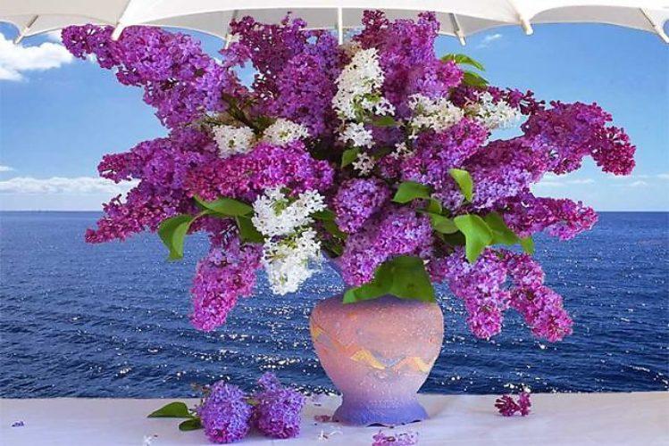 Картинка с днем рождения море цветы, фото