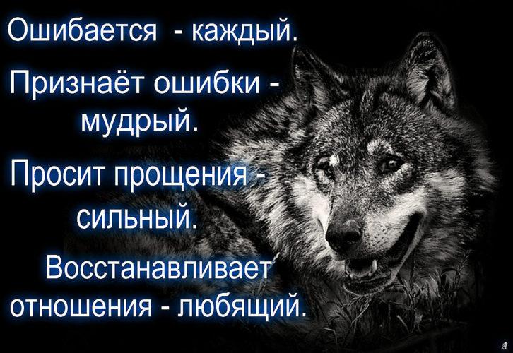 Картинки и фразы с волками