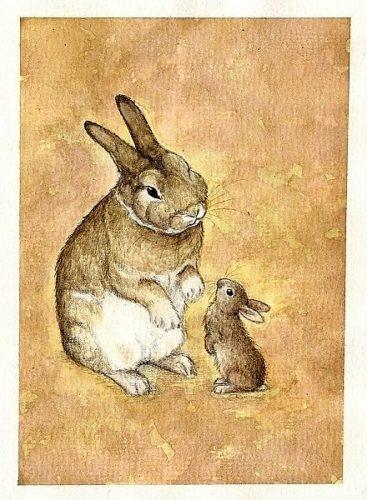 счастью, картинка маленький зайчонок улыбнулся маме пара узнала, что
