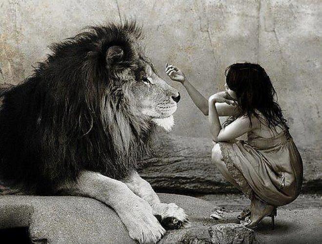 Стиле, картинки лев и женщина с надписями